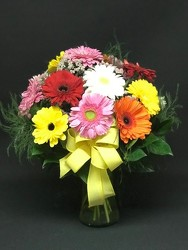 DELUXE GERBERA DAISIES from FlowerCraft in Atlanta, GA
