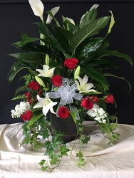 Deluxe Peace Lily from FlowerCraft in Atlanta, GA