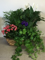European Garden Basket from FlowerCraft in Atlanta, GA